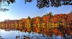autumn-581074_1920